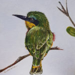 Bee Eater Carole Durrant Wilderness Art Festival