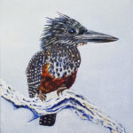 Giant Kingfisher Carole Durrant Wilderness Art Festival