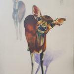 Wild Carole Durrant Wilderness Art Festival