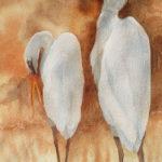 Egrets-25cm-x-44cm-M-Gillian-Dodington