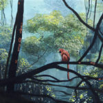 MonkeyinForest-Ingrid-Nuss